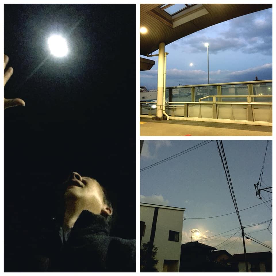 昨夜の月は大きかったですね。